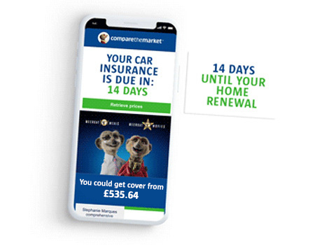 Save time when you automate your car and home insurance renewal quotes