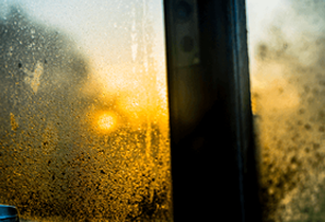 Damp or condensation? What's the difference and what to do about it
