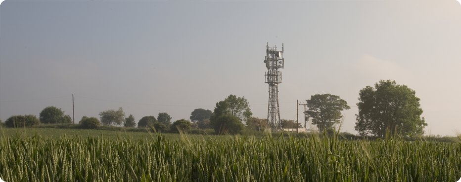 Phone mast in a field