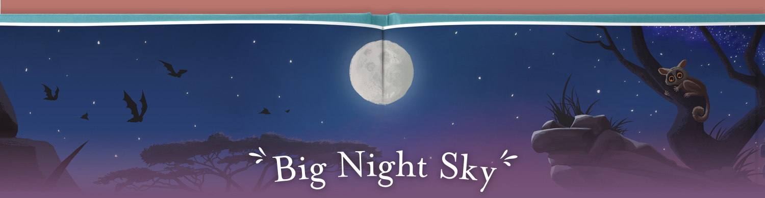 Big night sky
