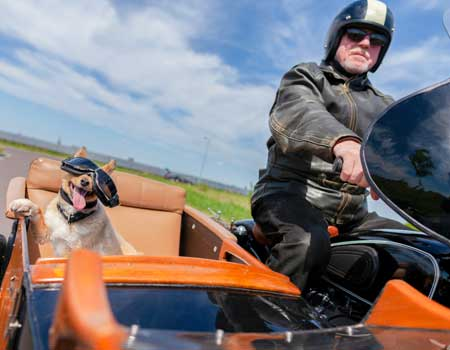 Man on a motorcycle with a dog in the sidecar
