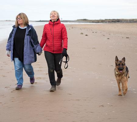 Ladies holding hands on beach whilst walking dogs