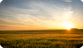 An image of the countryside with a sunset | Compare the Market